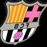 IIB_Logo_ Doménica Capelo