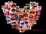 IIDF_Collage Emily Mettler - ALuara Jordán